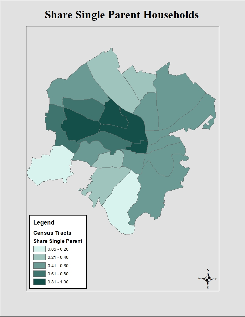 Roanoke City map showing concentration of single parent households in the Northeast.
